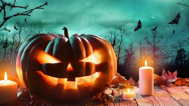 Hoje celebra-se o Halloween