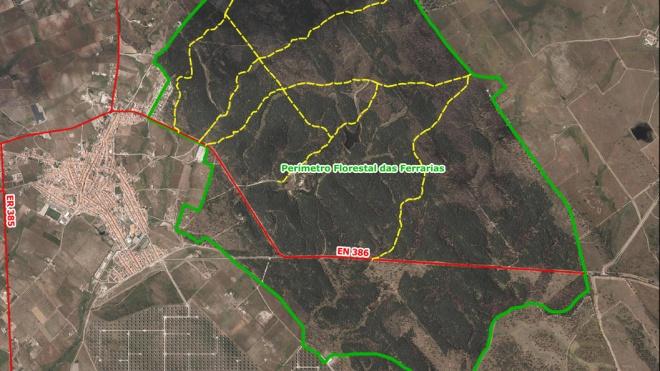 ICNF avança com beneficiação da rede viária florestal