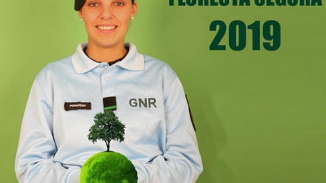 """GNR faz ações de sensibilização """"Floresta Segura 2019"""" no distrito"""
