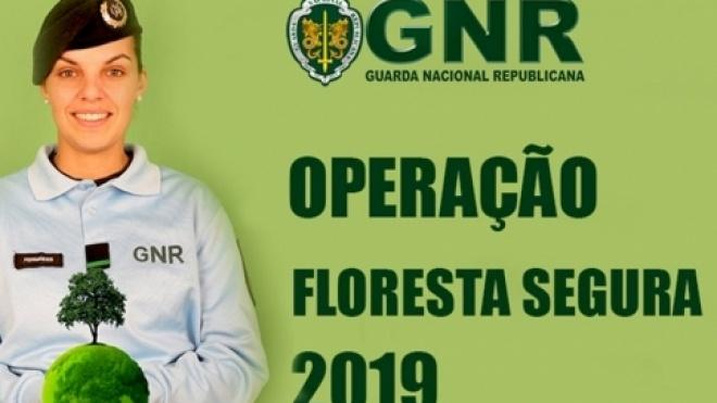 """Ação de sensibilização """"Floresta Segura 2019"""" em Selmes"""