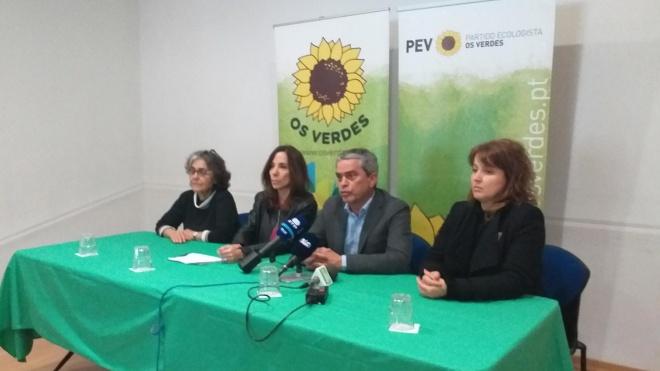 """PEV: """"olival intensivo é uma «praga» para combater com medidas concretas"""""""