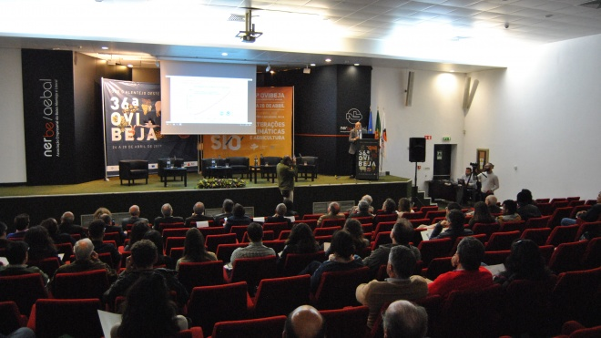 Na Ovibeja discutem-se alterações climáticas/impactos e estratégias