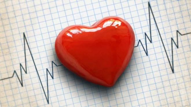 Odemira com iniciativas que promovem hábitos de vida saudáveis