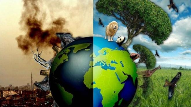 """Círculo de Silêncio """"Cuidar do Meio Ambiente"""""""