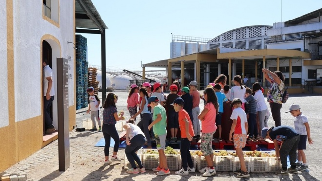Vidigueira promove Programa de Educação Patrimonial