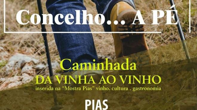 Serpa sugere caminhada da vinha ao vinho para o próximo domingo