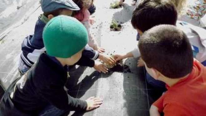 Centro de Interpretação do Carregueiro com actividades para crianças