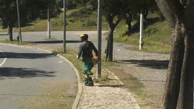 Campanha de limpeza de ervas na vila de Mértola