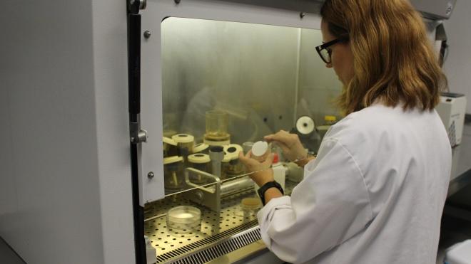 """EMAS de Beja: """"Laboratório é garantia de qualidade"""""""