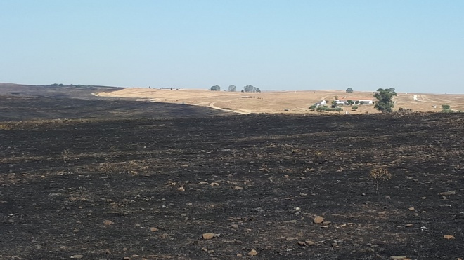 Agricultores de Castro Verde e Autarquia reúnem-se para avaliar impactos do incêndio