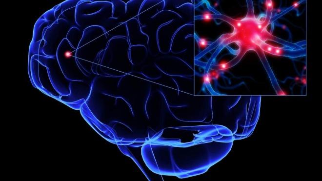 APELA alerta para o impacto que a pandemia tem sobre os doentes com Esclerose Lateral Amiotrófica