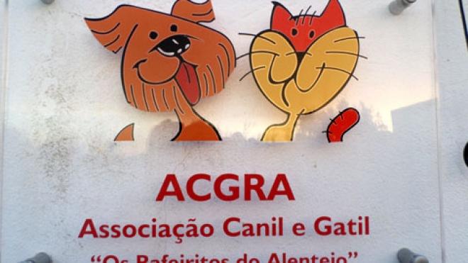 """Castro Verde apoia """"Rafeiritos do Alentejo"""" e """"Mind the Dog"""""""