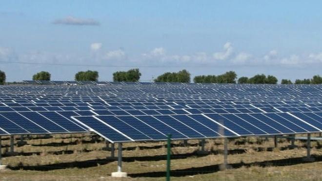 """Parque solar fotovoltaico """"nasce"""" em Ourique"""