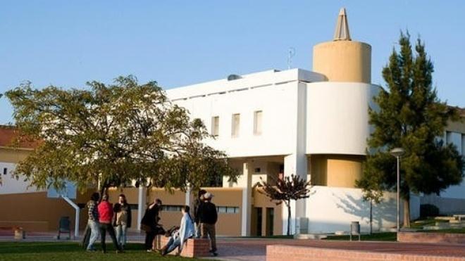 """Seminário """"Programas Culturais e de Desenvolvimento"""""""