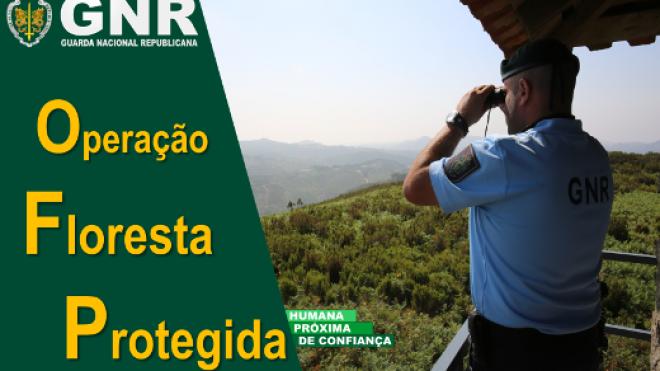"""GNR no terreno com Operação """"Floresta Protegida"""""""