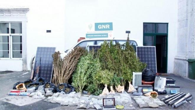 GNR de Beja faz uma das maiores apreensões de droga