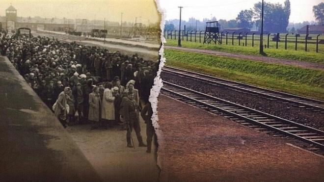 Alvito assinala 70 anos de Libertação de Auschwitz