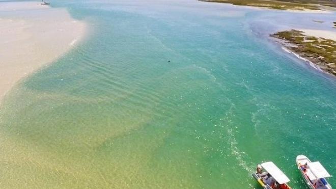 Câmara de Mértola leva idosos a navegar na Ria Formosa