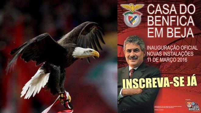Luís Filipe Vieira inaugura nova sede do Benfica em Beja