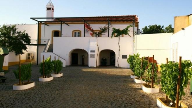 Adega de Vidigueira, Cuba e Alvito prepara vindimas