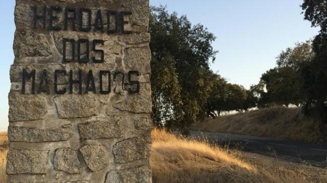 PS quer terminar com reversão de terras expropriadas