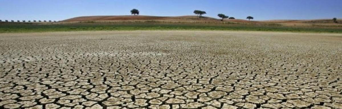 """""""Potencial de aquecimento global subiu mais do que atividade económica"""""""