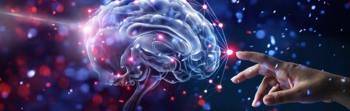 Beja recebe VI Encontro Nacional de Utentes e Cuidadores na área da Saúde Mental