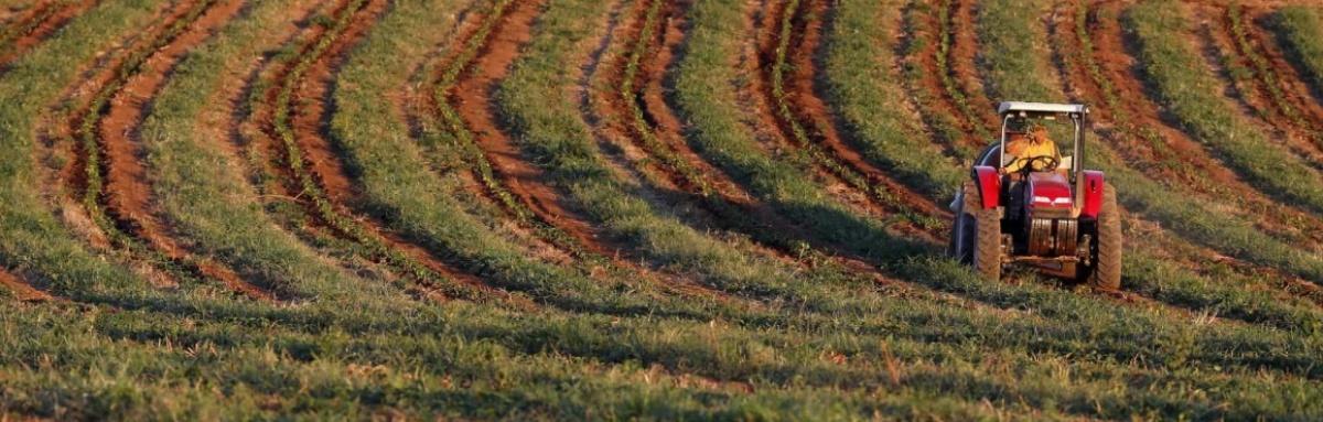 Beja recebe sessão de esclarecimentos aos agricultores