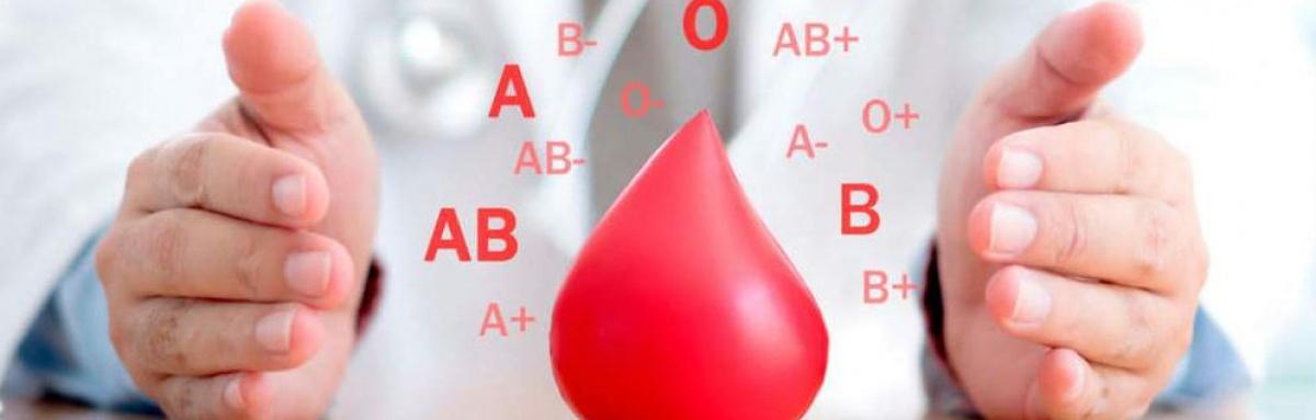 Colheita de sangue em Beja neste sábado