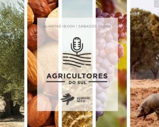 """Agricultores do Sul"": Castro Verde como Reserva da Biosfera da UNESCO"