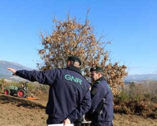 Mértola: GNR promove acções de sensibilização