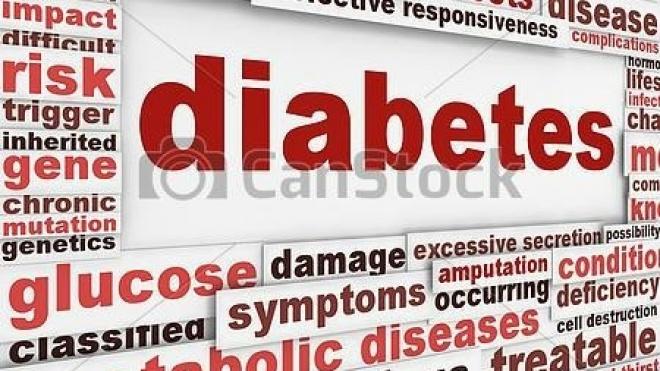 Jovens diabéticos tipo 1 encontram-se em Mértola