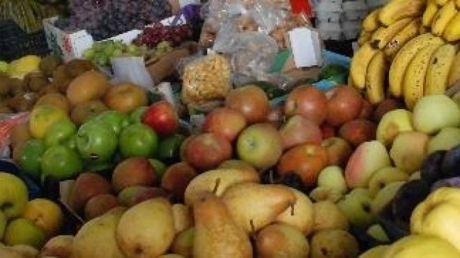 Aljustrel sensibiliza população para a importância de hábitos alimentares saudáveis