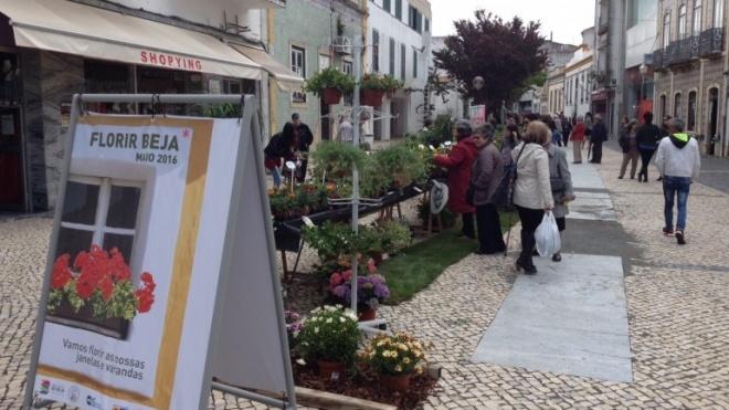 Maias e mercado das flores em Beja