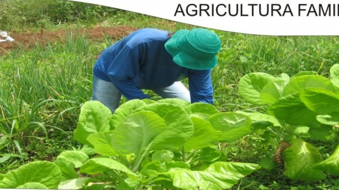 CNA alerta para fiscalidade na pequena agricultura