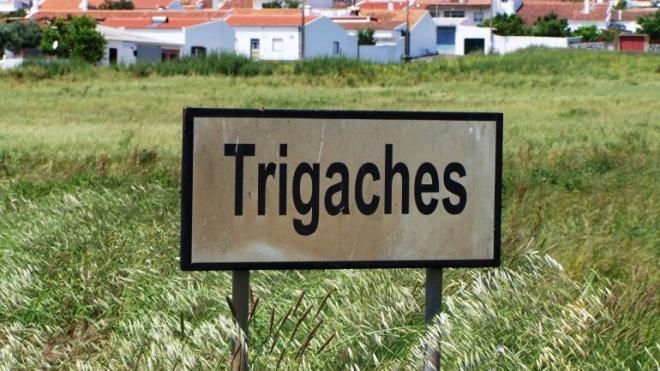 Desenvolvimento de Trigaches passa pelo regadio e Aeroporto