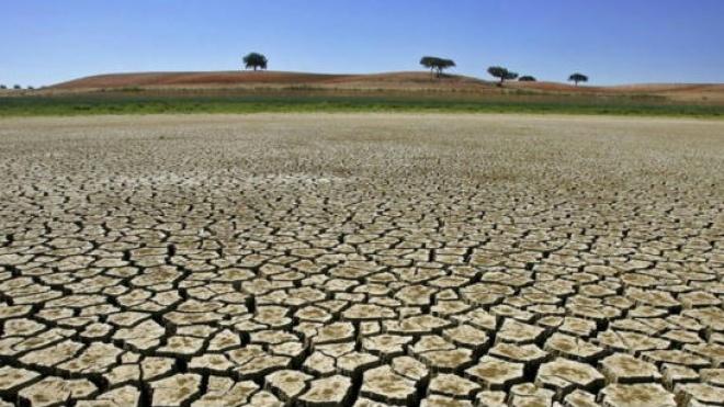 Falhas no Plano de Combate à Desertificação preocupam FAABA