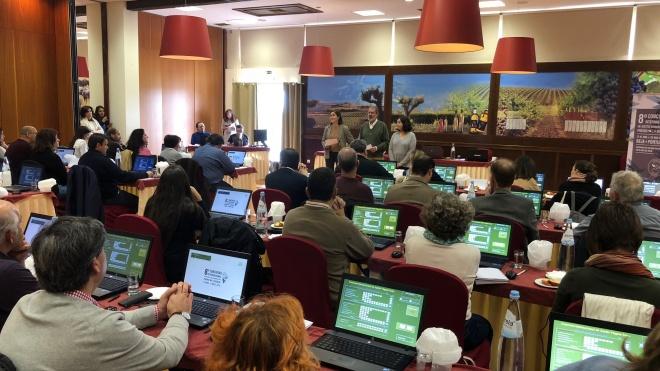 Jornalistas participam na Rota do Azeite
