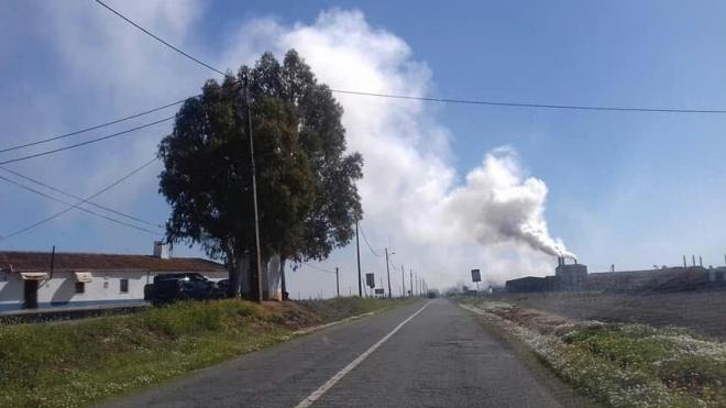 Fortes quer Ministério Público a investigar o que se passa nesta localidade