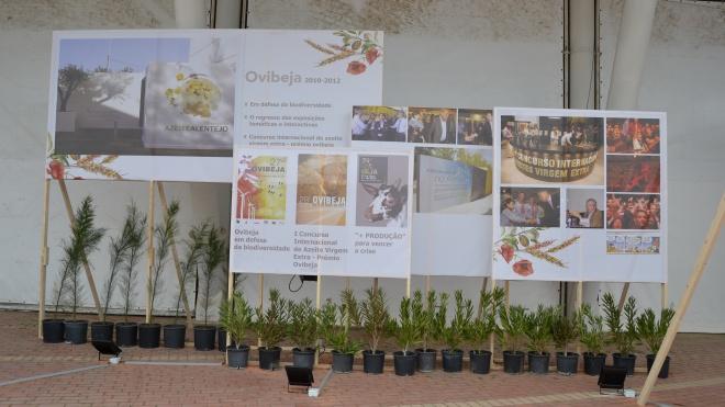 35 anos de feira para ver na Ovibeja