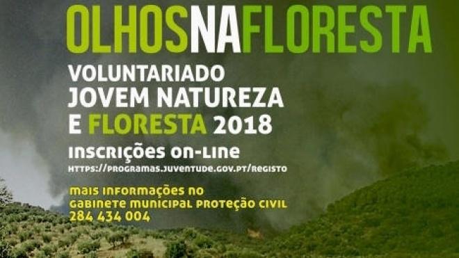 """""""Olhos na Floresta 2018"""" em Vidigueira"""