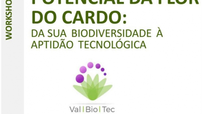 "Workshop ""Potencial da Flor do Cardo"" com inscrições abertas"