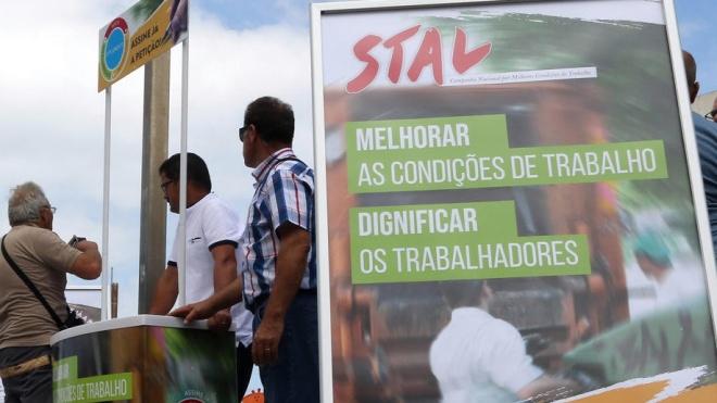 STAL promove campanha de rua