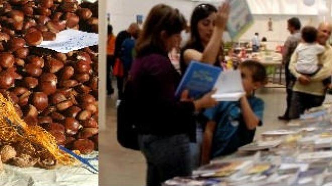 Livros para todos os gostos e frutos secos em Aljustrel até ao dia 30