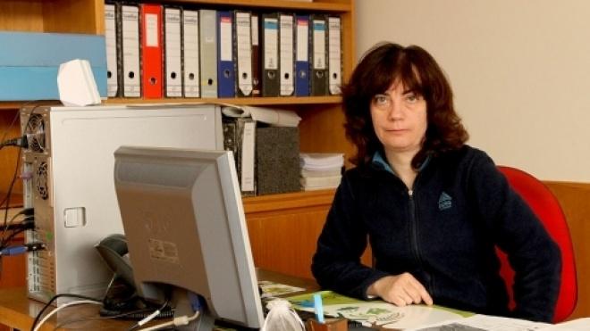 Gabinete Técnico Florestal tem novas instalações