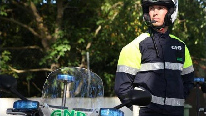 GNR com Operação Baco no terreno