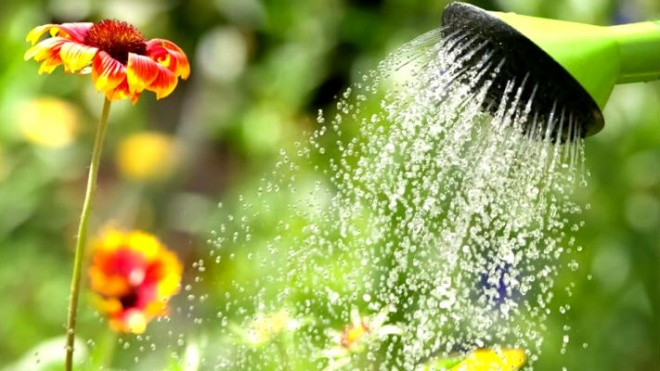 Jovens de Castro Verde realizaram vídeo sobre poupança de água