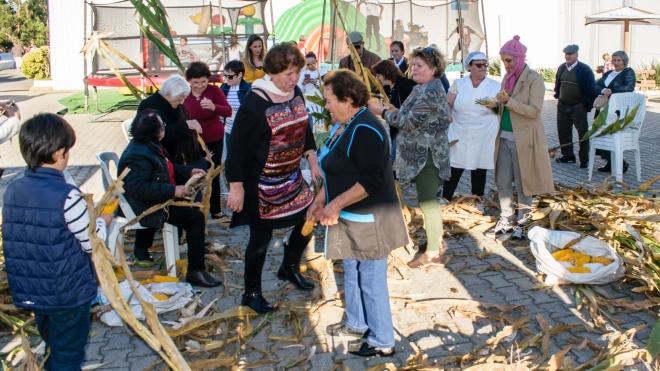 Festival do Milho e do Feijão em S.Teotónio