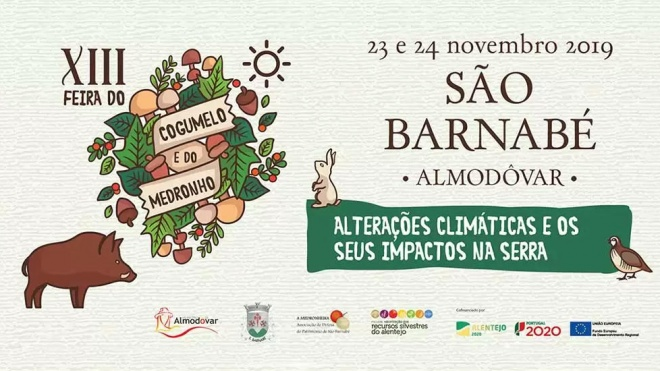 XIII Feira do Cogumelo e do Medronho em São Barnabé até domingo