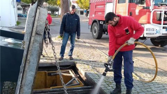 Serpa alerta população para deposição correta de cinzas
